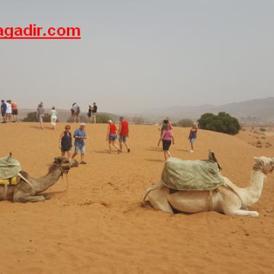 Small Desert Tour from Agadir
